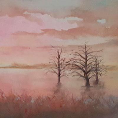 Evening mist by Ian Jones